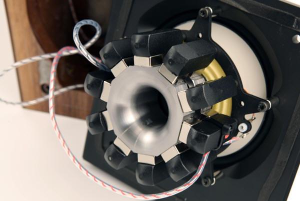 Raidho Open Speaker Magnet